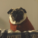 Vision Direct's Christmas Advert – Behind the scenes with Mr Gizmo