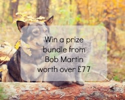 Bob Martin Giveaway