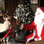 Santa comes to Paradise Wildlife Park