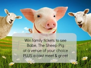 Win family tickets to see Babe, The Sheep-Pig