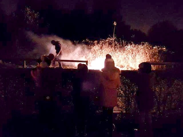 kids dressed warmly watching fireworks