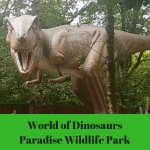Dinosaur adventures at Paradise Wildlife Park